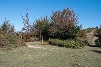 Montes de Vitoria - Collado del Pagogan 01.jpg