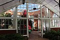More greenhouse - City Park New Orleans Christmas Tree.jpg