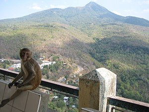 Mount Popa 09.jpg