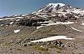 Mount Rainier 8332h.JPG