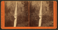 Multnomah Falls, 700 ft., Cascades, Oregon, by Watkins, Carleton E., 1829-1916.png
