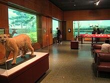 New England Habitats exhibit