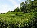 Mysterious mound, off Main Street, Shawell - geograph.org.uk - 453389.jpg