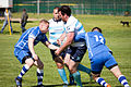 NATO Lions Rugby (7160389870).jpg