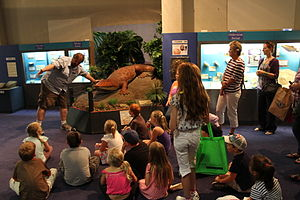 National Dinosaur Museum - Guided Tour