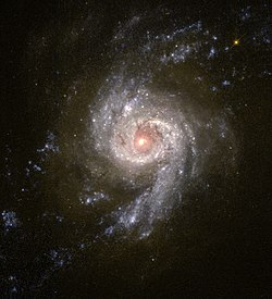 NGC 3310.jpg