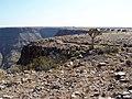 Namibia - P9023354 (15369324165).jpg