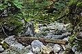 Naturdenkmal Erlaufursprung, Mitterbach.jpg