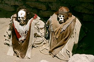 Nazca culture - Nazca burials at the Chauchilla Cemetery