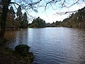 Newport, Tredegar House lake - geograph.org.uk - 1182807.jpg