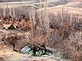 Neyshabour - Kalateh Jafar Abad - panoramio (2).jpg