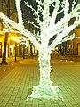 Nigth in Plovdiv 22.jpg