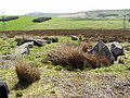 Nine Stone Circle - geograph.org.uk - 905343.jpg