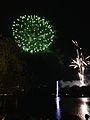 Nishi-nippon Ohori Fireworks Festival 20140801-4.jpg