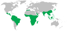 Range of the non-human primates (green)