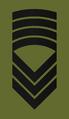 OR9 NOR - Sersjantmajor Hær.png