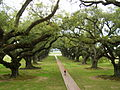 Oak Alley Plantation 2007.jpg