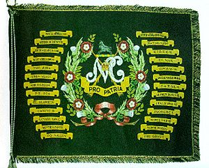 Natal Carbineers - The Natal Carbineers Regimental Colour