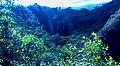 Opaekaa Falls, Kauai 2009 - panoramio.jpg