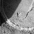 Opportunity berry Rock sample.JPG