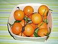 Oronules clementines 01.jpg