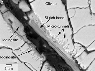 Yamato 000593 - Microscopic image of Y000593 meteorite shows iddingsite as evidence of water alteration. It displays microtunnels that may have been formed by biotic activity  (February 27, 2014).