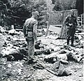 Padli partizani storžiškega bataljona.jpg