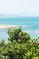 Pahutakawa (7967285060).jpg