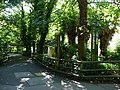Paignton , Paignton Zoo, Pathway - geograph.org.uk - 1484482.jpg