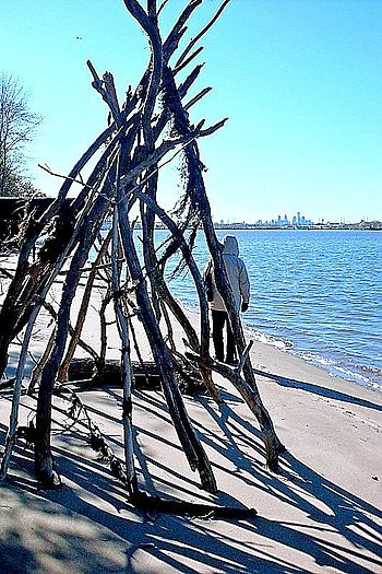 Driftwood along the banks of the Delaware River in Palmyra Nature Cove in Palmyra, NJ