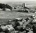 Paolo Monti - Servizio fotografico (Bergama, 1962) - BEIC 6362087.jpg