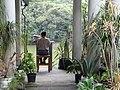 Park Scene - Chapultepec Park - Mexico City - Mexico - 01 (15236245417).jpg
