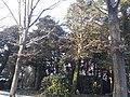 Parkfriedhof Eichhof 13.jpg