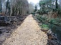 Path renovation - geograph.org.uk - 1342252.jpg