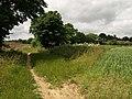 Path to Radley - geograph.org.uk - 871745.jpg