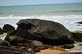 Pedra da Taratruga.jpg