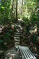 Penang National Park - panoramio.jpg