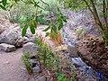 Pequeño curso de agua - panoramio (2).jpg