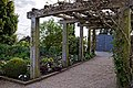 Pergola at RHS Garden Hyde Hall, Essex, England.jpg