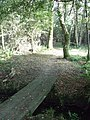 Permissive Footpath - geograph.org.uk - 1509563.jpg