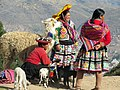 Peru-2422775 1280.jpg