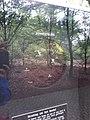 Planetenpad Westerbork (72).jpg