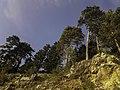 Planina Romanija - prirodne ljepote 22.jpg