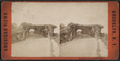 Playground Arbor, Prospect Park, from Robert N. Dennis collection of stereoscopic views.png