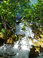Plitvice lakes (38).JPG