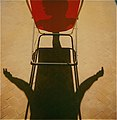 Polaroid sx 70 - foto di Augusto De Luca (4).jpg