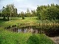 Pond, Ormonde Fields golf course - geograph.org.uk - 191155.jpg