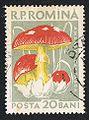 Posta Romana - 1958 - mushroom 20B.jpg