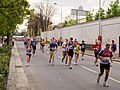 Pražský maraton, před 30 km.jpg
