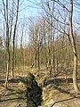 Prague Kunraticky Forest East5.jpg